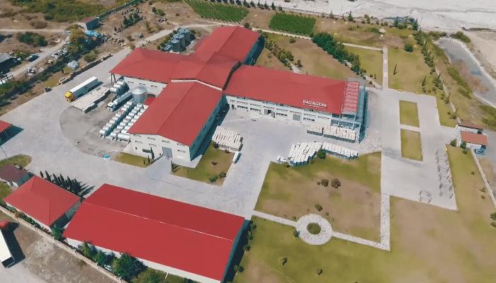 Проектирование, построение и поддержка ИТ-инфраструктуры для дистрибьютора грузинских вин Badagoni